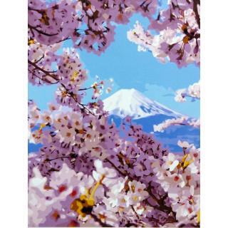 Картина по номерам - Весна в горах