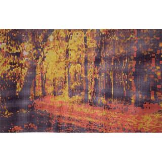 Времена года - осень в парке