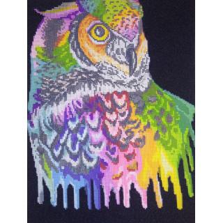 Радужная сова